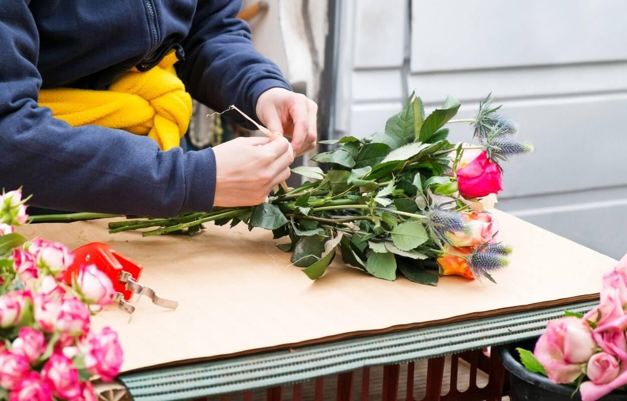 Mini rose growing tour img 09
