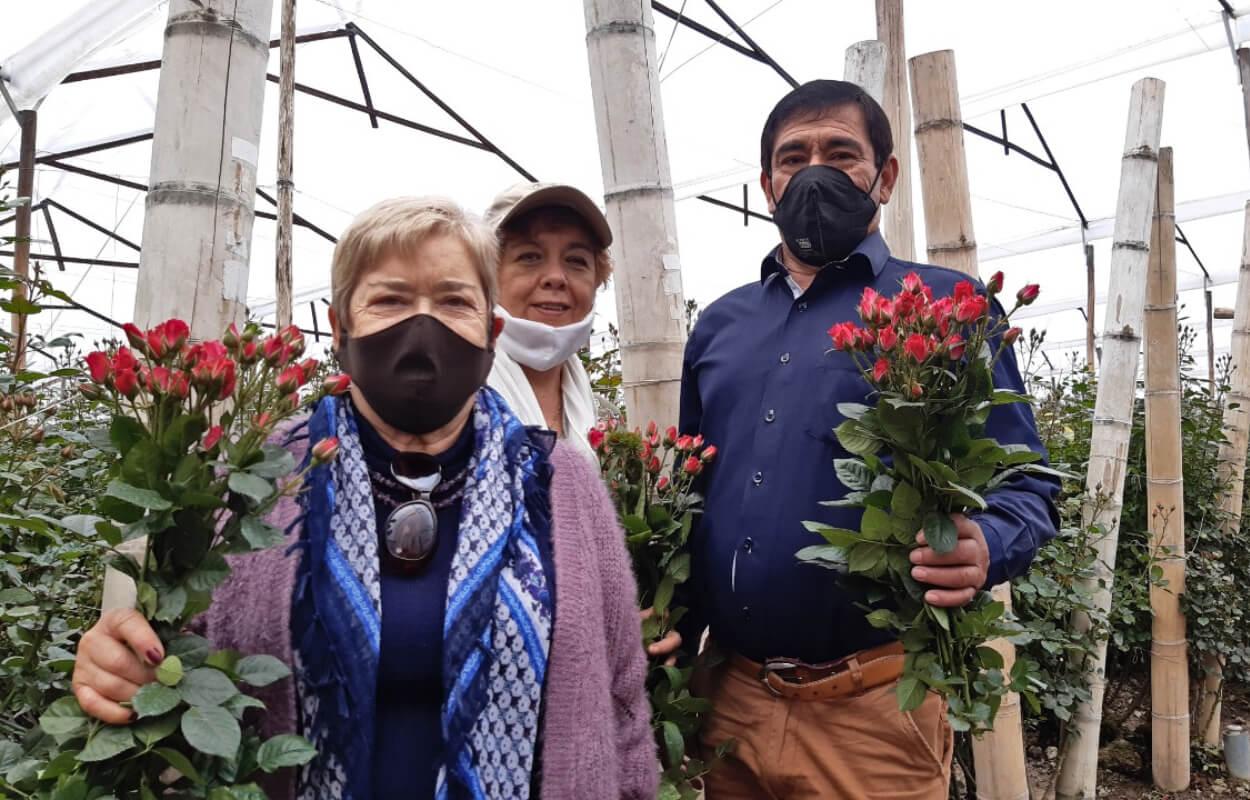 Tour cultivo de rosas bogotapass img 03