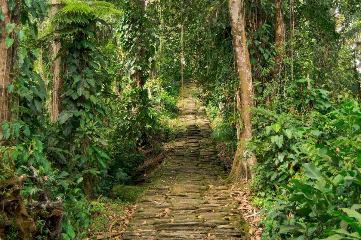 Trekking Lost City Colombia Tour img 8